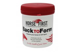 HORSE FIRST Back to Form
